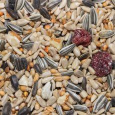 Krmivá a doplnkové krmivá pre vtáky